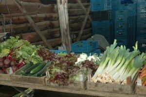 Vegetables - Jan Hassink